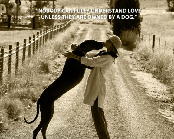 Quotes About Love Dogs : Will Rogers Quotes About Dogs. QuotesGram