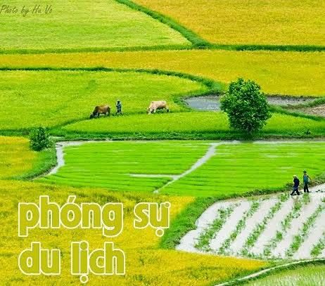 Du Lịch Việt Nam (Online)