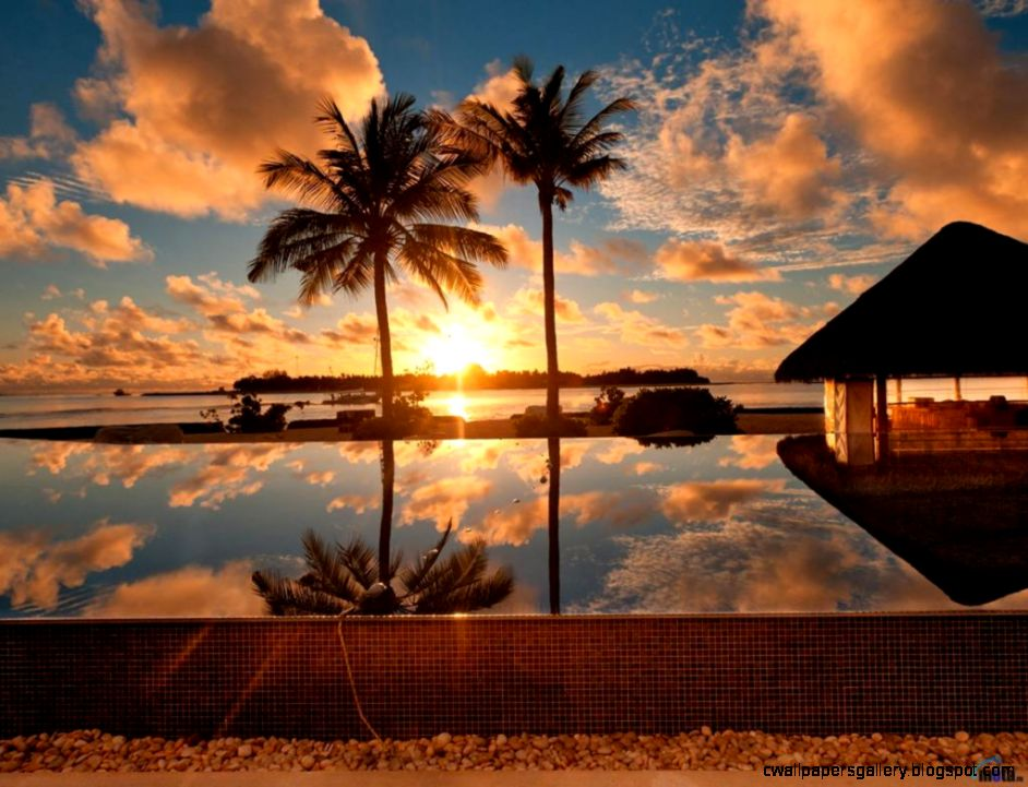 Download Wallpaper Tropical Pool Sunset wallpaper   Summer
