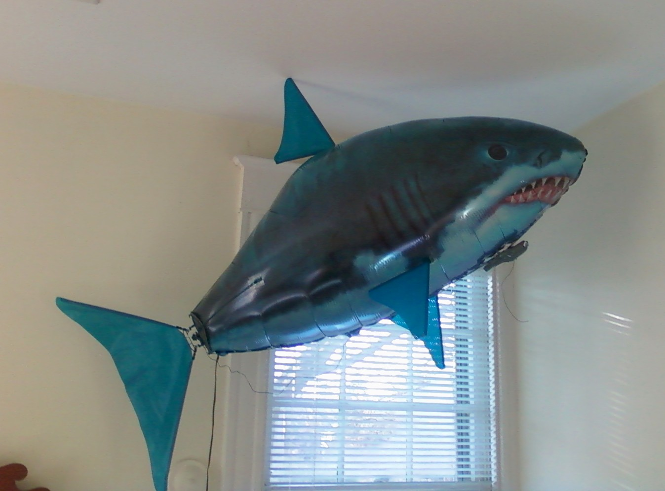Cool Shark Toys : Cool toys