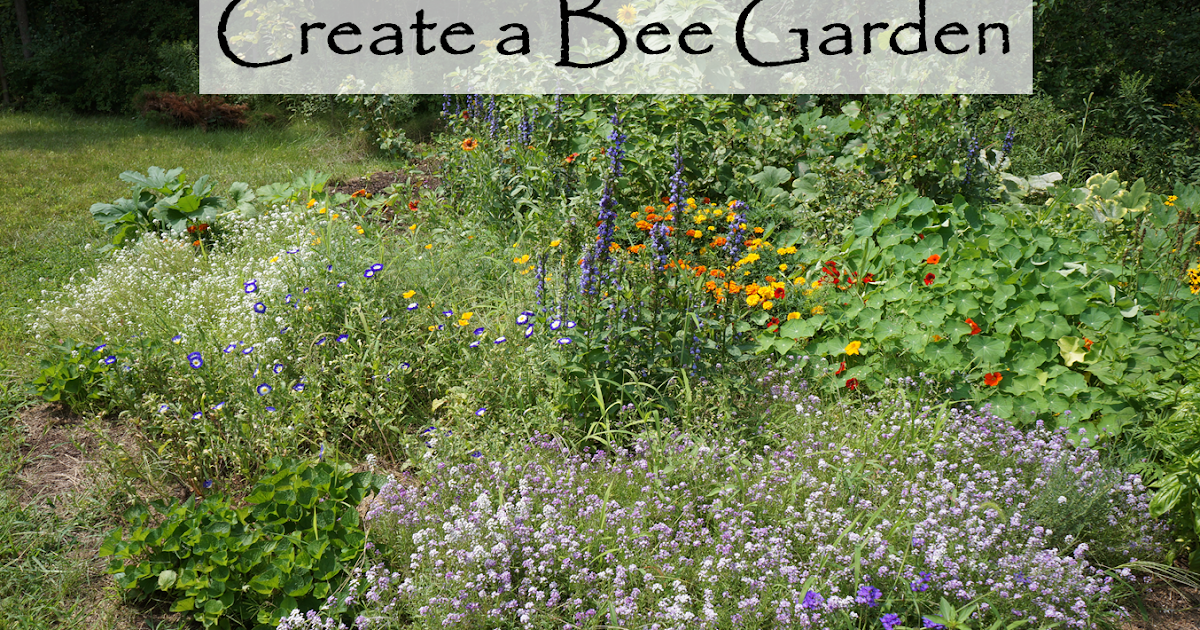 Great The Backyard Farming Connection