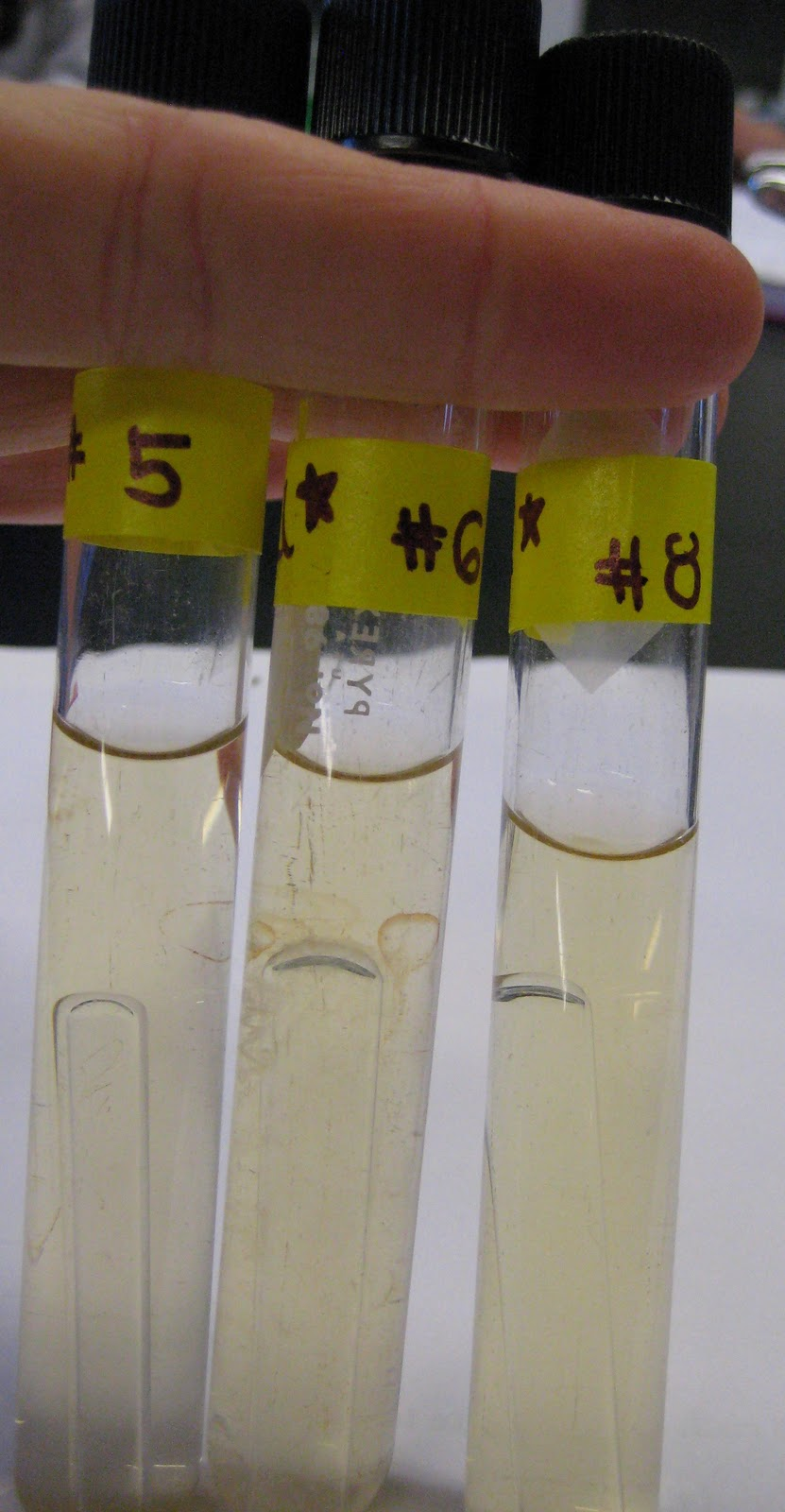 microbiology lab test 1 1) lower stage 2) remove and clean slide with ethanol and kimwipes if oil was used place in slide box 3) scanning objective (shortie) facing stage.