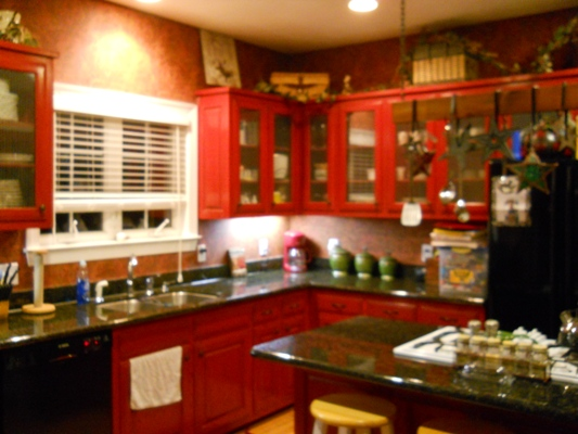 Picture of kitchen cabinet doors with chicken wire for Chicken wire kitchen cabinets