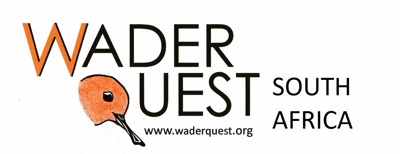 Wader Quest South Africa