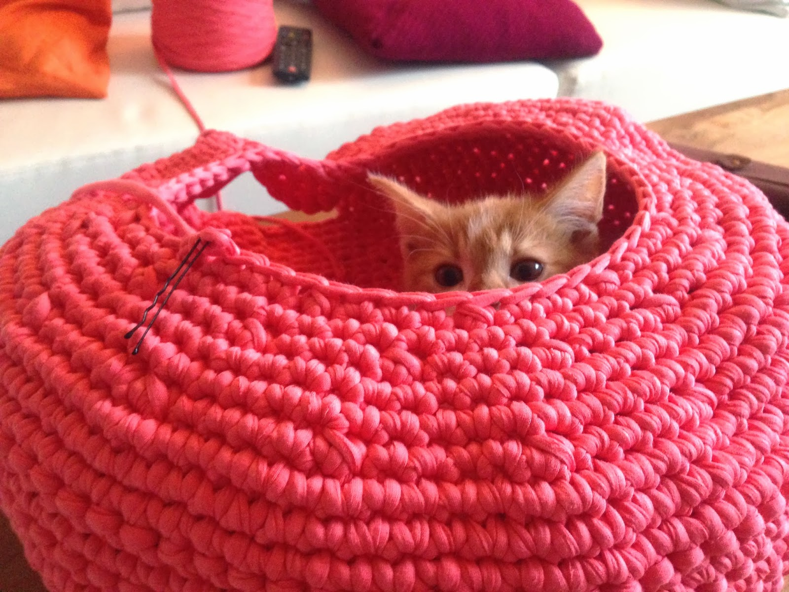 Crocheted Cat Bed Free Pattern