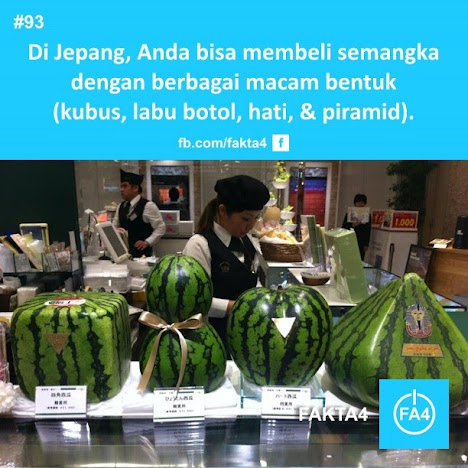 Bentuk Semangka dari Jepang