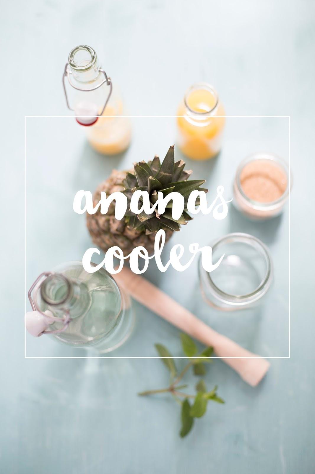 Zutaten für leckeren Ananas Cooler