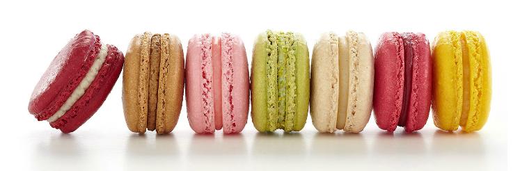 Petit Four - cake boutique
