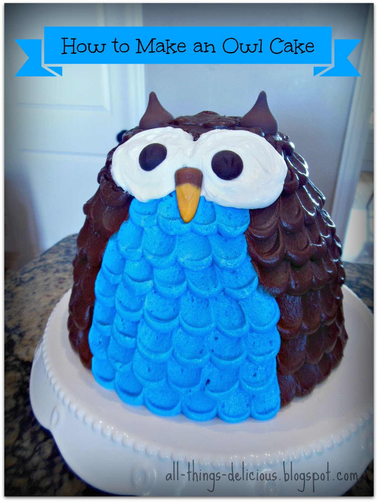 ALL THINGS DELICIOUS How to Make an Owl Cake