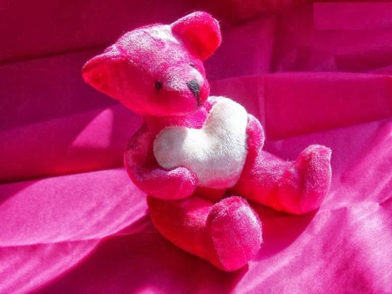 Pink Teddy Bear Wallpapers For Facebook