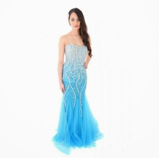 Prom dress evening gown Elsa dress mermaid dress Summer Ball
