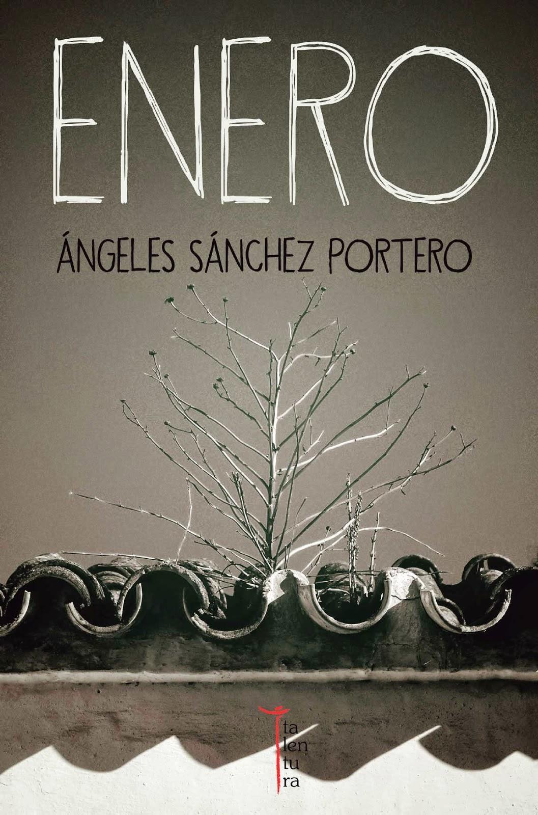 "Mi novela ""Enero"" (Ed. Talentura)"