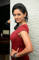 Pooja Kumar in lovely Right Red Dress at Uttama Villain Movie Release Date Press Meet