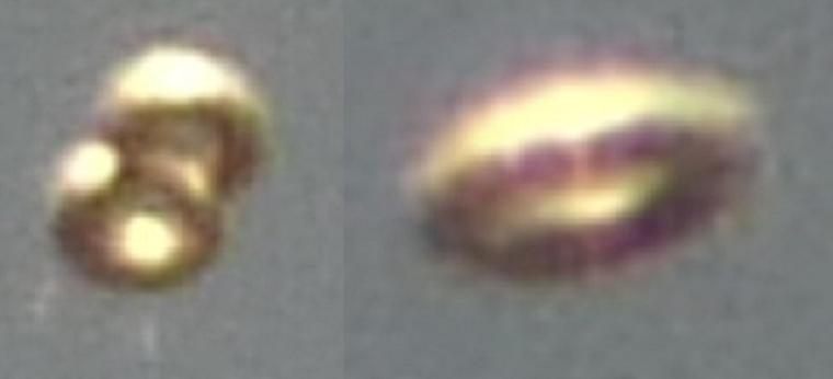 FOTO,ORIGINAL*UFOS DONAS*