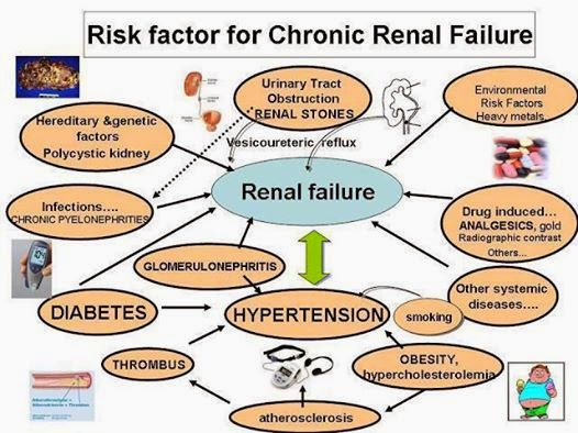 chronic renal failure causes and management National chronic kidney disease fact includes glomerulonephritis and cystic kidney disease, among other causes management of chronic kidney disease kidney.
