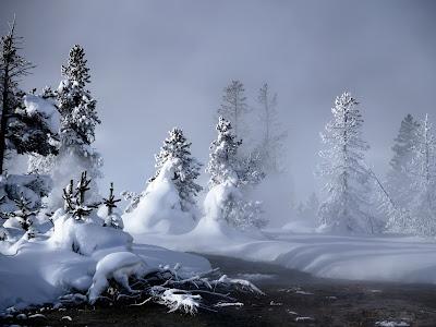 Imagine Iarna