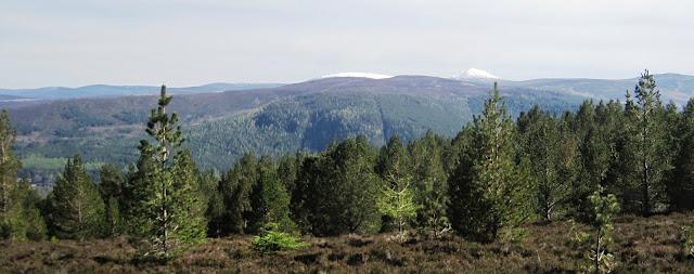 View across Deeside