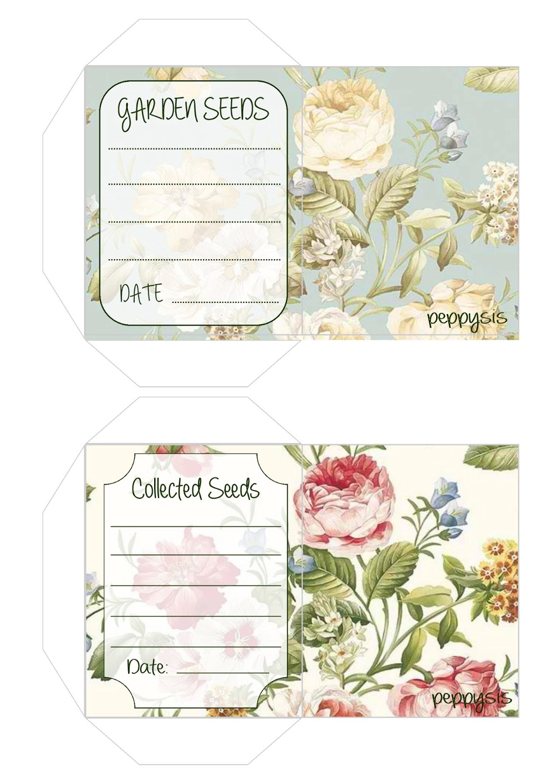 This is a picture of Superb Seed Packet Template Pdf