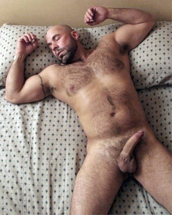Sexy Hairy Bear Gets Sucked
