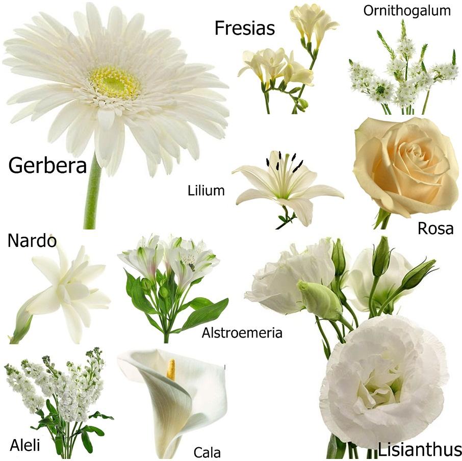 Fotos De Ramos Flores Blancas - Fotos de ramos de flores Fotos Bonitas de Amor