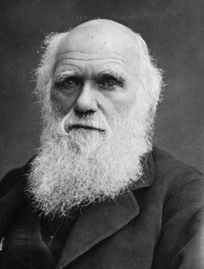 Scientist : Charles Darwin