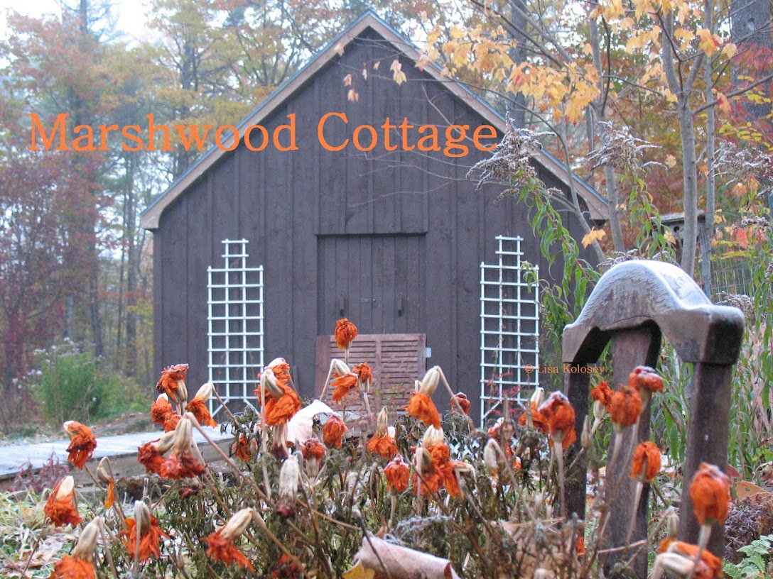 Marshwood Cottage