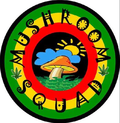 Lagu Reggae Mushroom Squad Mp3 Full Album