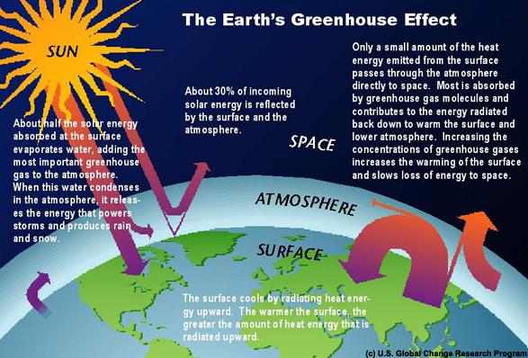 [Image: Graph_greenhouse_lg.jpg]