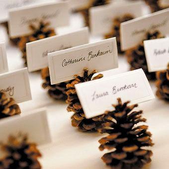 Photo inspiration mariage automne hiver , décoration de table pommes de porte carte mariée table décoration automne mariage