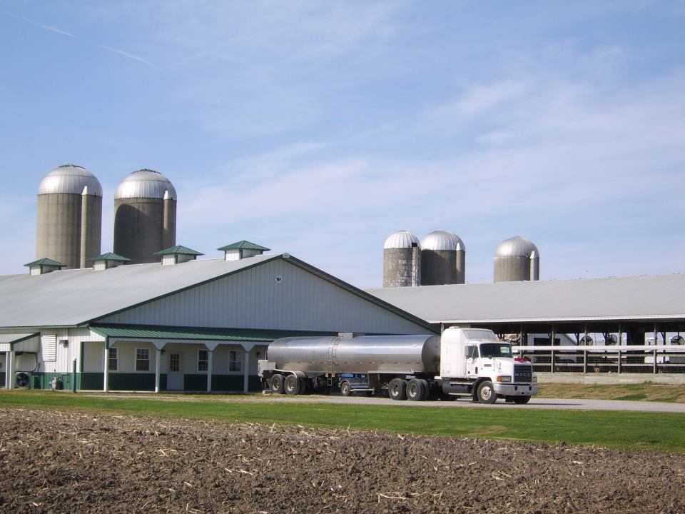 Return to not your typical dairy farm