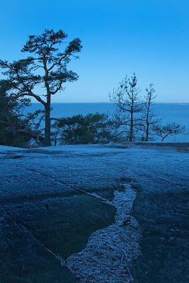 Suomen itsenäisyyspäivä ja luontokuva