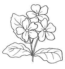 Desenhos de Flores para Pintar
