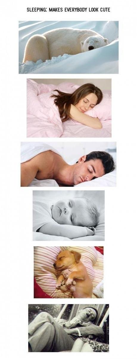 Sleeping makes everybody look cute