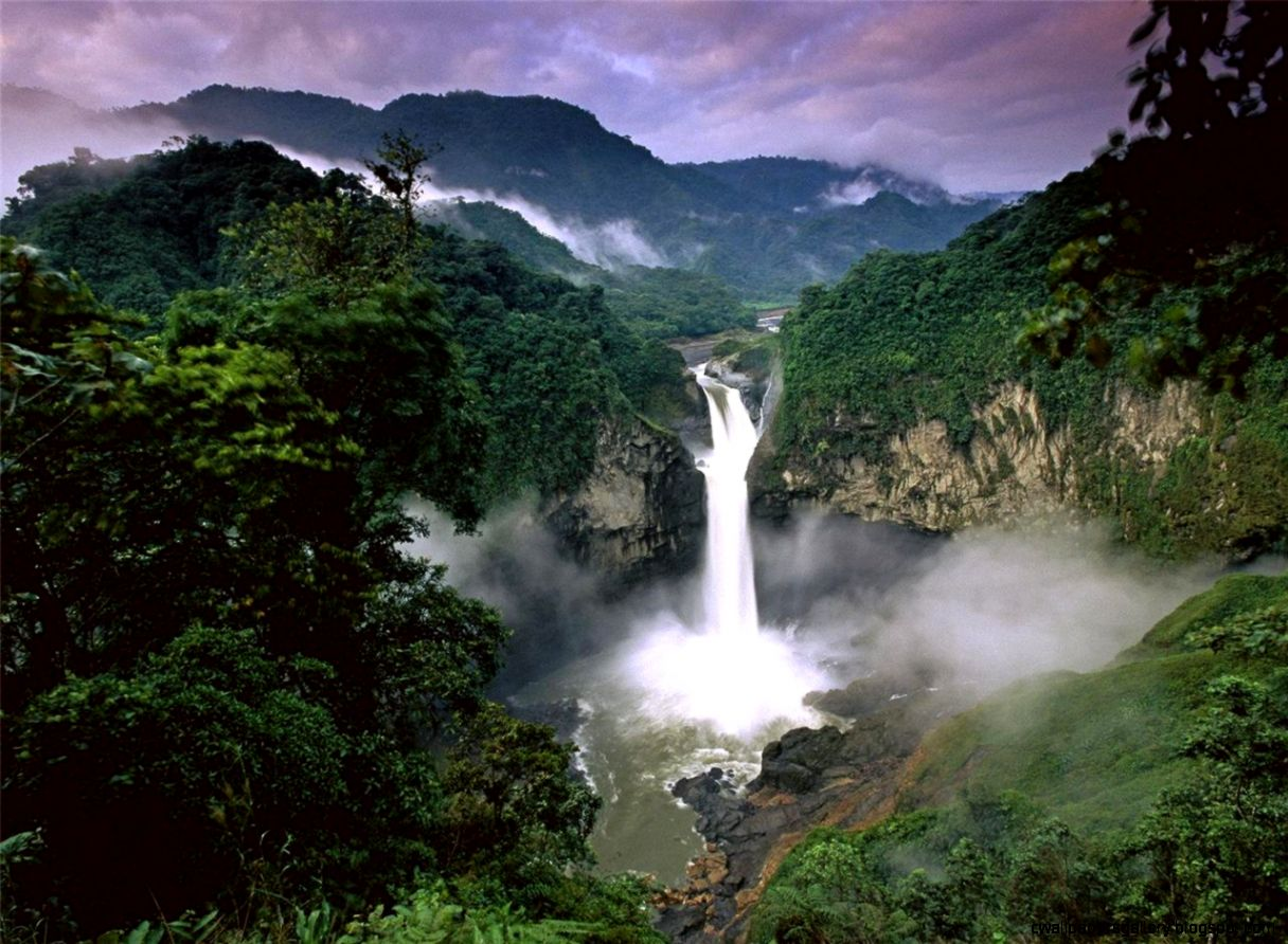 Amazon Rainforest Waterfall Related Keywords  Suggestions