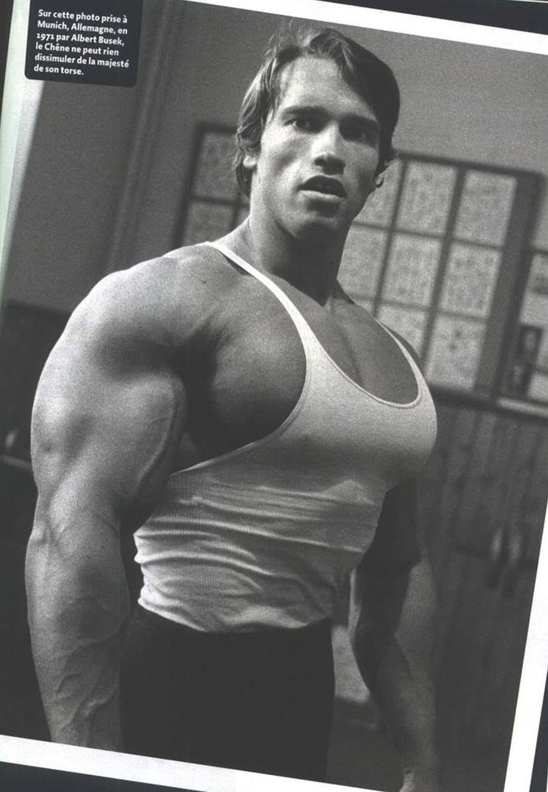http://3.bp.blogspot.com/-9d1NtsH9Ruw/TkhLb1dCLxI/AAAAAAAAAZg/cCgE-zEBpbE/s1600/Arnold+Schwarzenegger+Bodybuilding+Wallpaper-29.png