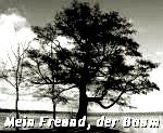 http://jahreszeitenbriefe.blogspot.de/2015/12/mein-freund-der-baum-34.html