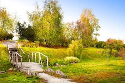 Camino hacia la libertad - Encuentro con la naturaleza - Natural corner freedom
