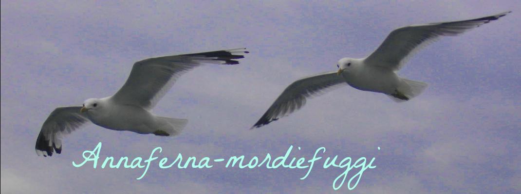 annaferna-mordiefuggi