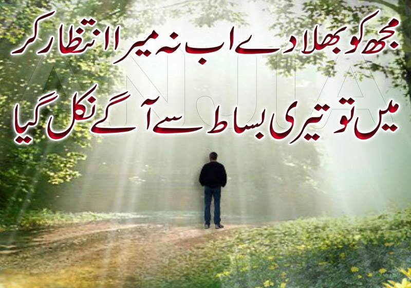 Essay My Best Friend In Urdu