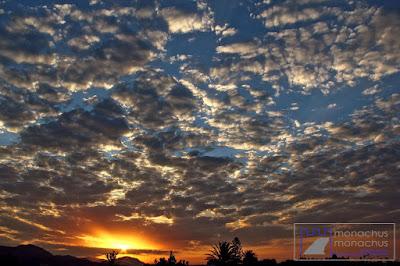 Monachus Monachus Apartments: Sunrise with clouds