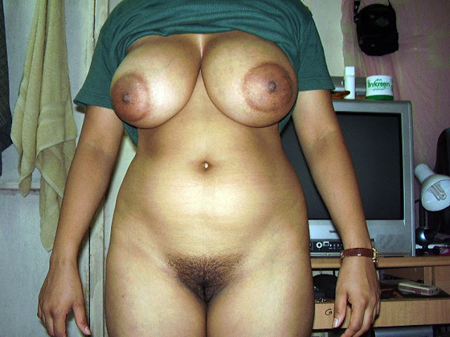 Desi Indian Housewife Take Off Her Clothes And Showing Big Boobs