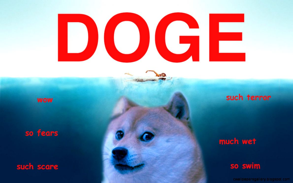 doge shibe wallpaper - photo #7