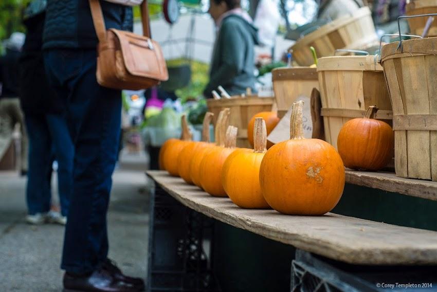 Portland, Maine Farmers Market in Deering Oaks Park October 2014 photo by Corey Templeton