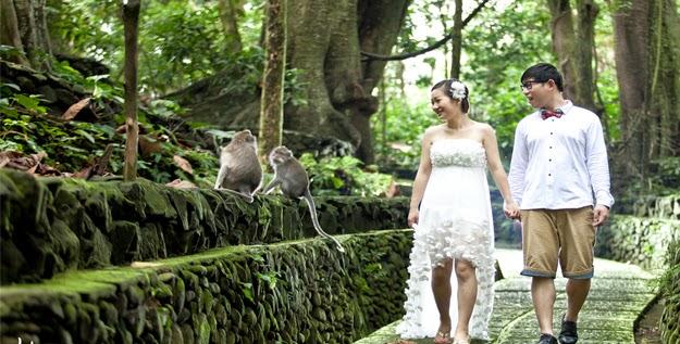 Ubud Monkey Forest Ubud Bali