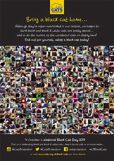 National Black Cat Day 2013 homing poster