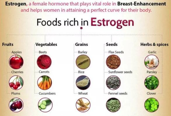 स्तन का आकार बढ़ाने वाले आहार