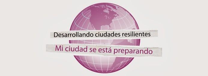 PLATAFORMA REGIONAL AMERICAS RRD 2014