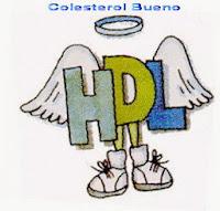 BieneSaludAlgom Colesterol Bueno