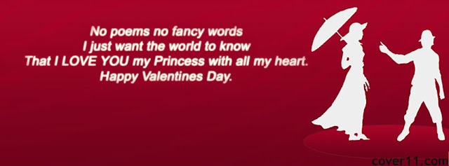 Valentine's Day 2013 Facebook Banners