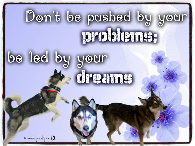 Don't be pushed by your problems, be led by your dreams. Quote